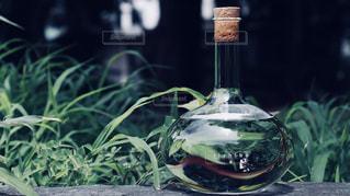 テーブルの上に座ってガラス花瓶の写真・画像素材[1282293]