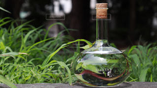 近くにガラス花瓶をテーブルの上のの写真・画像素材[1282417]