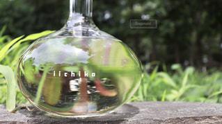 近くのガラス花瓶の写真・画像素材[1282418]