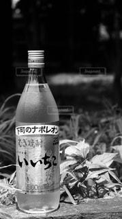 テーブルの上のビール瓶の写真・画像素材[1282425]