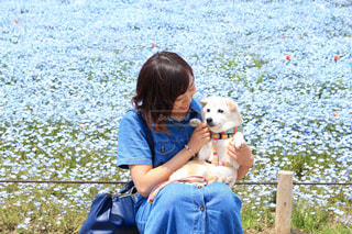 愛犬との思い出の写真・画像素材[1371439]