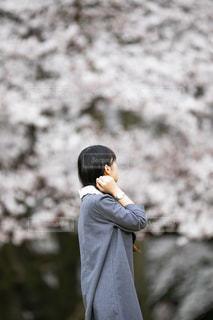 桜を見つめる女性の写真・画像素材[3126889]