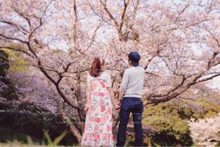 桜コーデの写真・画像素材[1117769]