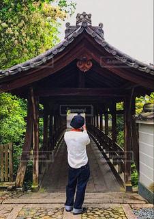 男性,建物,屋外,京都,神社,後ろ姿,景色,新緑,人,後姿,旅行,日本,japan,仏閣,カメラ男子