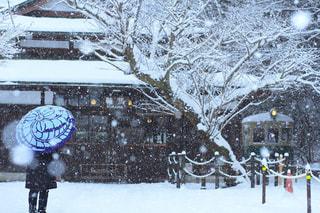 雪降る駅舎 - No.1014925
