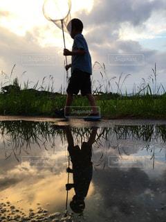 子ども,夕日,夕焼け,水たまり,虫取り,水鏡,リフレクション,雨上がり,sunset,虫あみ