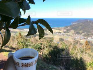 テーブルの上のコーヒー カップの写真・画像素材[798432]