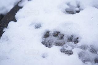 雪の山の写真・画像素材[886736]