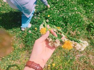 草の中に立っている男の人の写真・画像素材[905484]