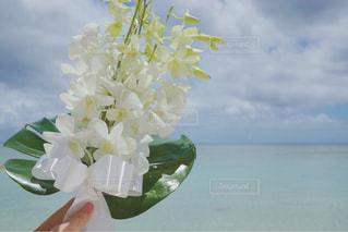 テーブルの上の花の花瓶 - No.908971