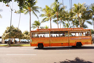 ヤシの木の横の通りを運転するバスの写真・画像素材[918589]