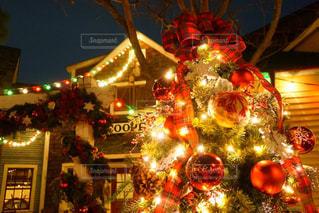 夜ライトアップされたクリスマス ツリーの写真・画像素材[918665]