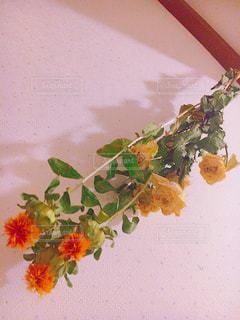 テーブルの上の花の花瓶の写真・画像素材[934305]