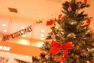 クリスマス ツリーの写真・画像素材[934321]