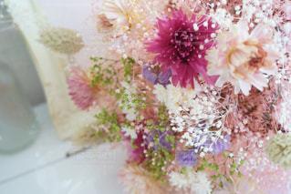 近くの花のアップ - No.934332