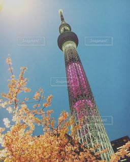 近くの塔のアップの写真・画像素材[1194761]