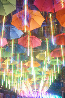 カラフルな傘の行の写真・画像素材[1216681]