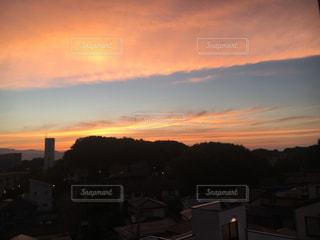 夕日,神奈川,うちの庭