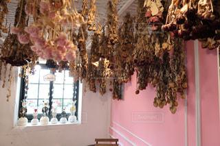 近くの部屋で飾られたツリーのアップの写真・画像素材[1466316]