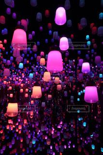 野菜の展示の束が夜ライトアップの写真・画像素材[1810955]