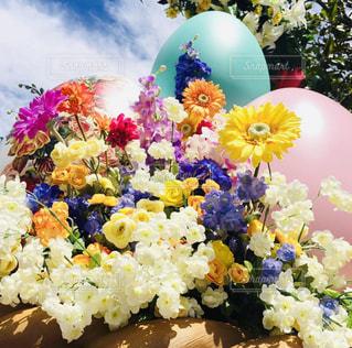 空,花,かわいい,カラフル,フラワー,アート,女子,可愛い,たまご,イースター,パステルカラー,おしゃれ,フォトジェニック,ファンシー,インスタ映え