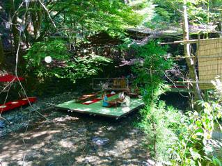 京都の写真・画像素材[665205]