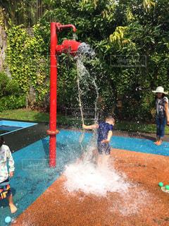 水遊びの写真・画像素材[665685]