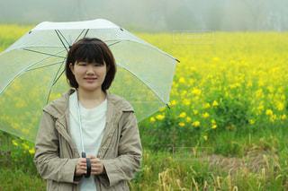 花畑の写真・画像素材[664876]