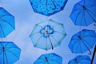 青の傘たちの写真・画像素材[1234134]