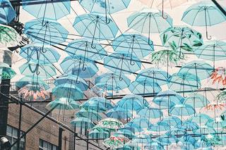umbrella ARTの写真・画像素材[1234151]