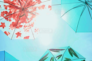 カラフルな傘 フィルム調の写真・画像素材[1234169]