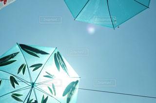 傘アート リーフデザインの写真・画像素材[1234172]