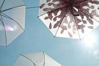傘アート モノクロデザインの写真・画像素材[1234174]
