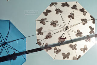 蝶々 傘アート写真の写真・画像素材[1234187]