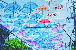 空,街並み,雨,傘,ピンク,カラフル,青,葉っぱ,紫,アート,街,イベント,デザイン,あめ,梅雨,模様,街中,カラー,色,art,colorful,彩り,アンブレラ,umbrella,町興し,傘アート