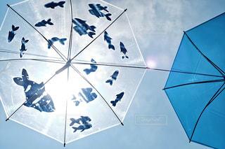 傘アート 魚の世界の写真・画像素材[1234192]