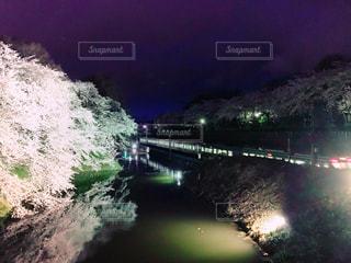 春,桜,電車,山形