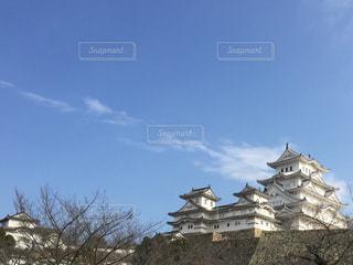白すぎ城の写真・画像素材[914680]