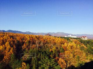 背景の山と木 - No.859792