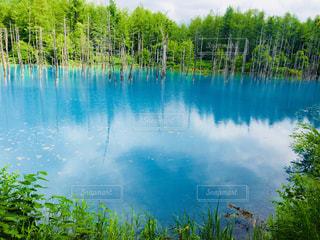 木々 に囲まれた水の大きな体 - No.880201