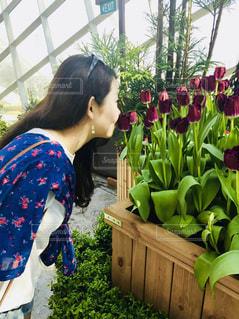 花の前に立っている女性の写真・画像素材[887566]