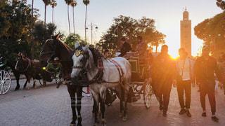 馬に乗る男描画キャリッジ旅行の道をの写真・画像素材[1268600]