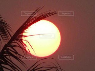 近くにカラフルな夕日のアップの写真・画像素材[1268647]