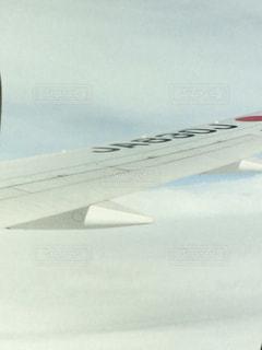 機内から見た翼*⋆✈︎の写真・画像素材[795209]