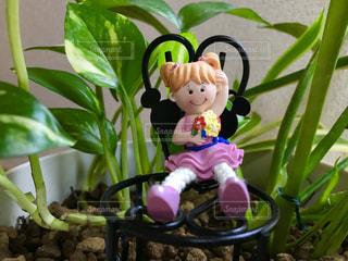 植物の中の女の子♪の写真・画像素材[843436]