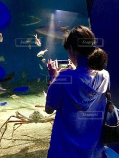 魚,水族館,スマホ,人物,人,休日,カニ,のんびり,大洗,アクアワールド大洗