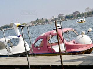 スワンボートandてんとう虫ボートの写真・画像素材[1098357]