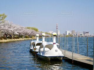 青い空と湖に、可愛いスワンボート😄の写真・画像素材[1098372]