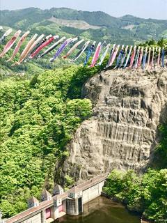 竜神大吊橋から見た風景🎏の写真・画像素材[1263933]