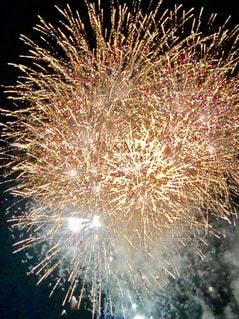 鮮やかな花火🌸の写真・画像素材[1312934]